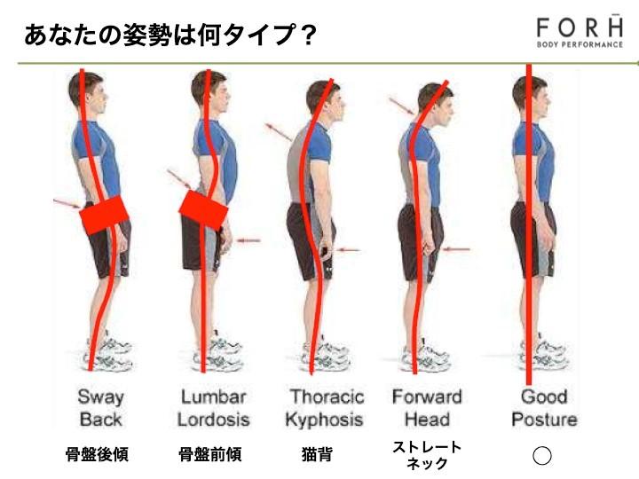 姿勢の図式